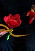 die-blume-tulipan_02