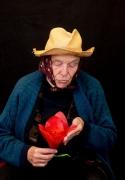 die-blume-tulipan_05